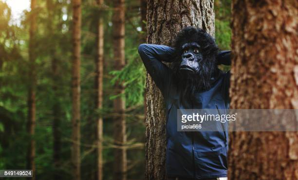 modern evoluted gorilla do things - mask disguise stock pictures, royalty-free photos & images