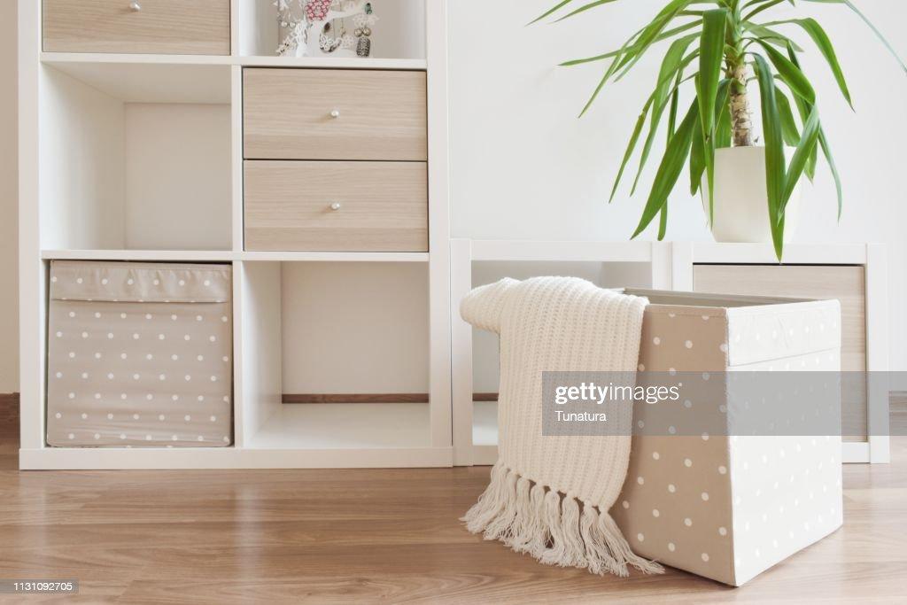 Modern furniture, white shelves : Stock Photo