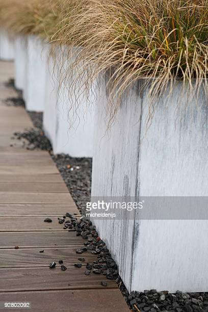 Modern Garden Detail