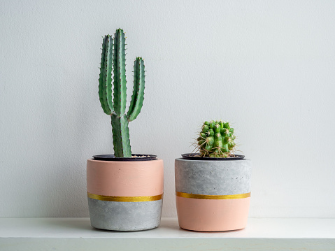 Modern geometric concrete planter. Beautiful concrete pot. 1185550828