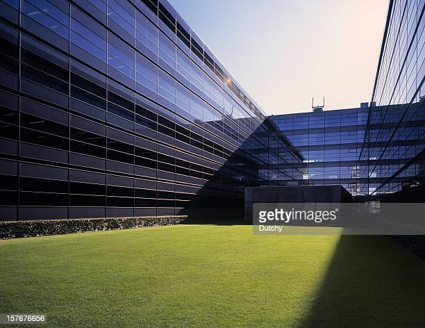 modern glass office building with grass field. - turf stock pictures, royalty-free photos & images