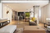 Modern hipster apartment interior living room