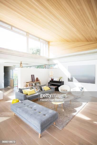 Modern home showcase living room