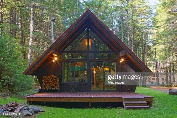 modern house with backyard in forest - log cabin stock pictures, royalty-free photos & images