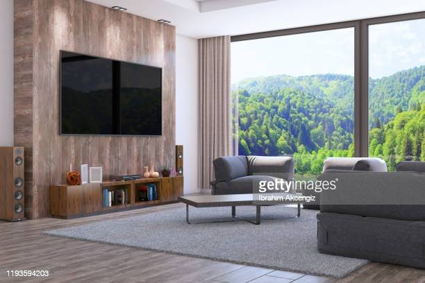 873 Luxury Living Room Tv Photos And Premium High Res Pictures Getty Images