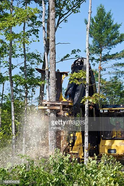 Modern logging
