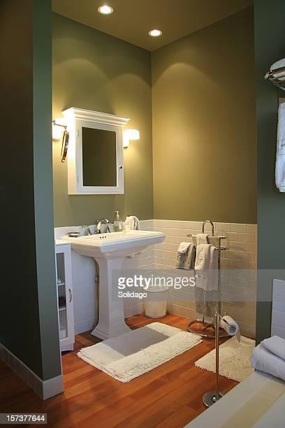 Modern Luxurious Retro Bathroom