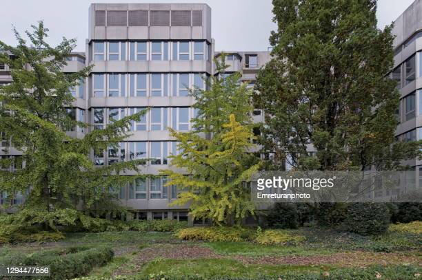 modern office building and lush foliage in downtown zurich. - emreturanphoto stock pictures, royalty-free photos & images