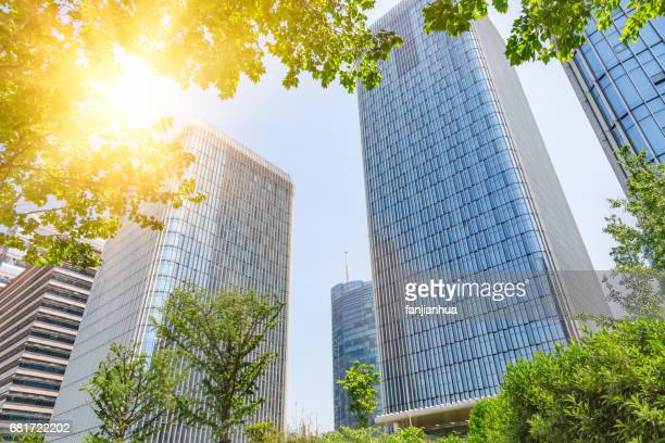modern office building with green leaves on foreground
