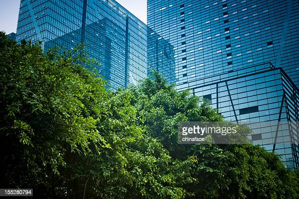 modern office building with green plant