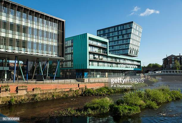 modern office buildings, river don, sheffield - sheffield stock pictures, royalty-free photos & images