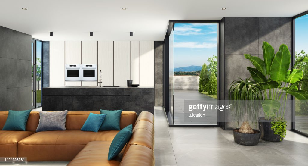 Modern Open Concept Kitchen And Living Room Area With Large