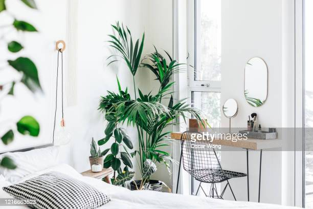 a modern, stylish and bright bedroom with plants - domestic room stock pictures, royalty-free photos & images