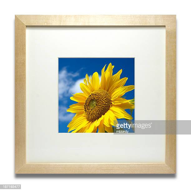 Modern stylish wooden frame (isolated with clipping path)