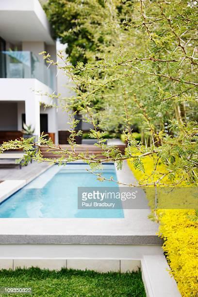 Modern swimming pool in backyard