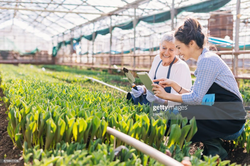 Modern technology and gardening : Stock Photo