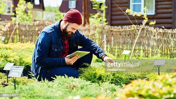 La technologie moderne en horticulture