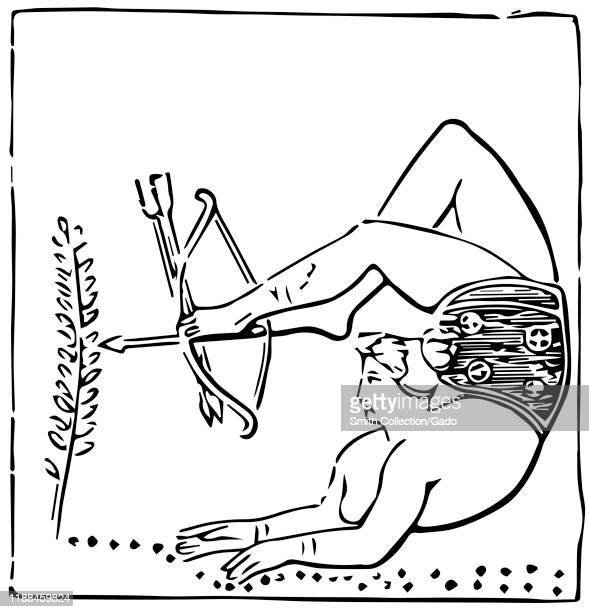 Modern tracing from Ancient Greek amphora showing a female juggler and performer in a contorted position using her feet to fire and arrow from a bow...