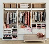 modern wooden wardrobe with women clothes hanging on rail in walk in closet design interior, 3d rendering