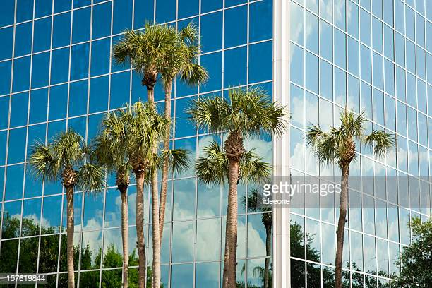 Moderne Facade and Palm trees