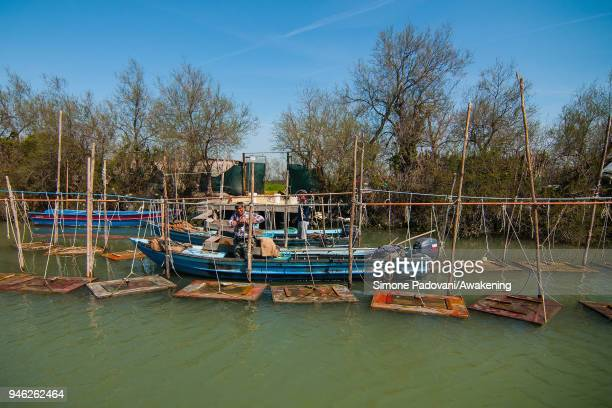 A 'Moecante' is seen during a fishing tour of 'Moeche' organized by Cooperativa San Marco in Burano on April 14 2018 in Venice Italy At the beginning...