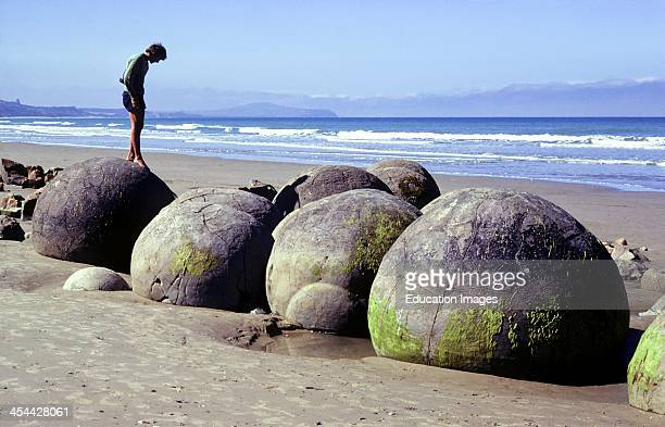 Moeraki boulders, concretions, Cementing calcite slowly crystallized around an organic nucleus forming a spherical nodule, started 60 million years...
