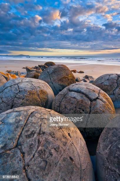 moeraki boulders on beach at sunrise, otago, new zealand - otago region stock pictures, royalty-free photos & images