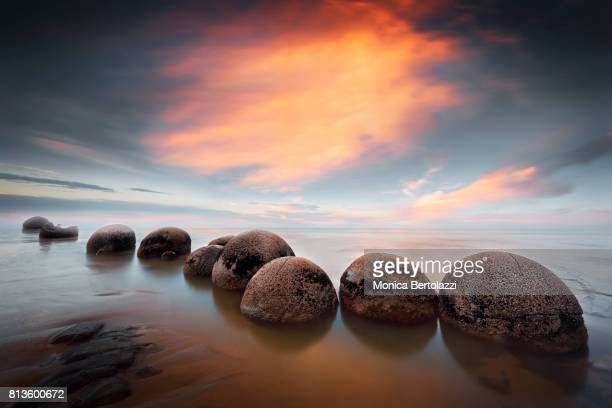 moeraki boulders #1 - dunedin new zealand stock pictures, royalty-free photos & images
