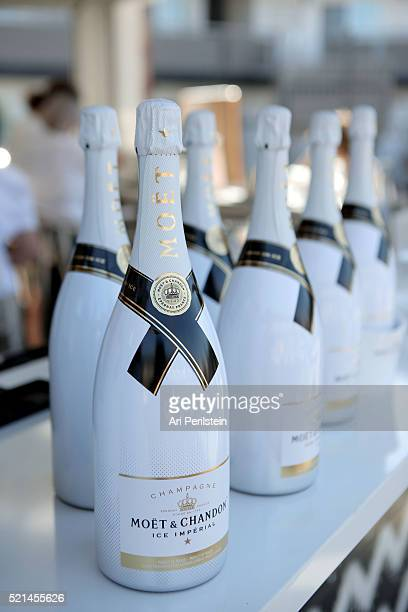 Moet Chandon kicks off Coachella With REVOLVE on April 15 2016 in Palm Springs California