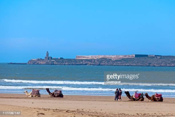 Mogador Island of the coast of Essaouira