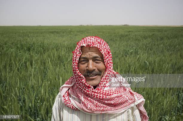 Mohamad Abdelaziz from Baharia is responsible for a large field of grain in the Southern Valley Company Farm March 13 2012 He has been working in...