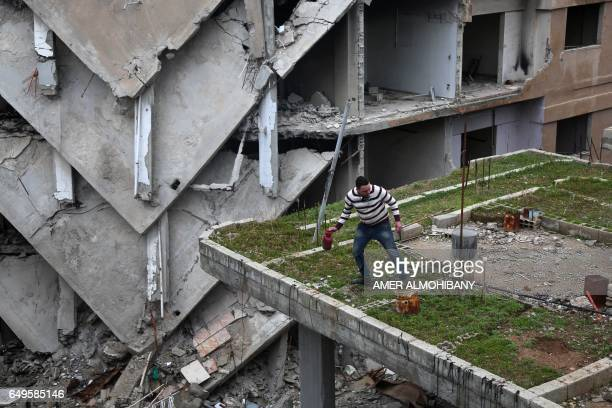 """Mohamed Ataya, a 31-year-old Syrian man known as """"Abu Maher"""", tends to his plants on the rooftop of his damaged building in the Syrian rebel-held..."""