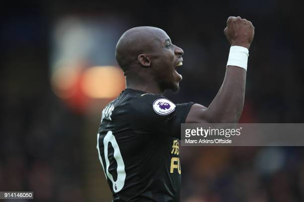 Mohamed Diame of Newcastle United celebrates scoring the opening goal during the Premier League match between Crystal Palace and Newcastle United at...