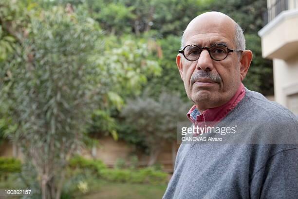 Mohamed Elbaradei Receives 'paris Match' At His House In Cairo. Le Caire, 7 février 2011 : le prix Nobel de la paix 2005 Mohamed EL BARADEI, ancien...