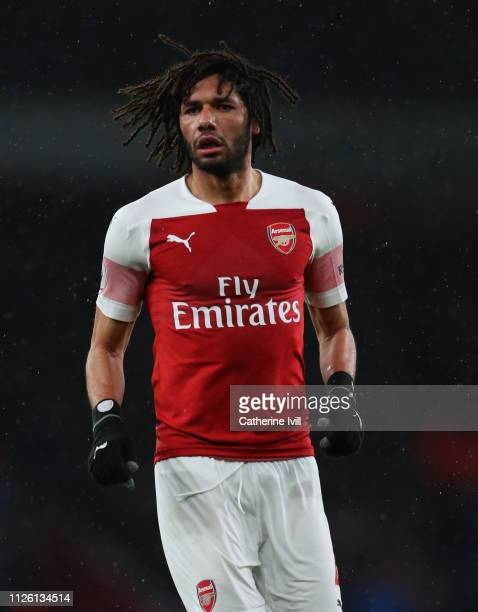 Mohamed Elneny of Arsenal during the Premier League match between Arsenal FC and Cardiff City at Emirates Stadium on January 29 2019 in London United...