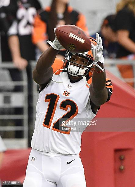 Mohamed Sanu of the Cincinnati Bengals catches a pass during warm ups prior to an NFL preseason game against the Arizona Cardinals at University of...