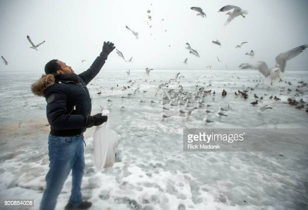 Mohamed Tahir who immigrated from Eritrea five years ago likes to feed the birds at Cherry beach He brings bread left over from a meal every two...