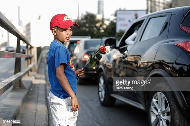 Mohammed a refugee from the countryside near Aleppo Syria sells roses to passing motorists in Beirut Lebanon on April 7 2014 There are over 1 million...
