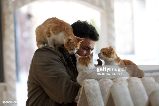 Mohammed Alaa alJaleel pets cats near marble cubes used as houses at Ernesto's Cat Sanctuary that he runs in Kfar Naha an oppositionheld town in...