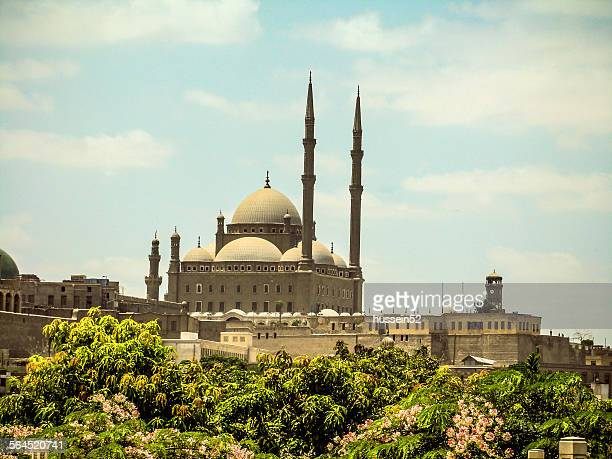 mohammed ali mosque - hussein52 stock photos and pictures