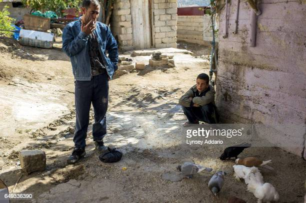 Mohammed Emir stands over his eight pigeons he brought over from Syria after crossing into Hacipasa and clipping their wings with Scotch tape in...