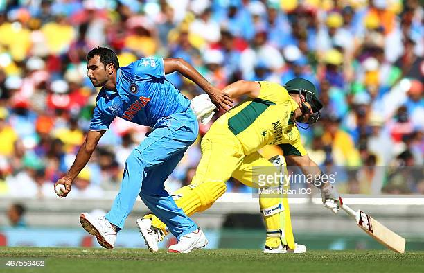 Mohammed Shami of India fields off his own bowling during the 2015 Cricket World Cup Semi Final match between Australia and India at Sydney Cricket...