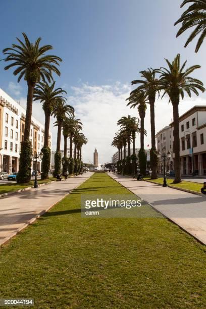 mohammed v avenue in rabat, morocco - mausoleo fotografías e imágenes de stock