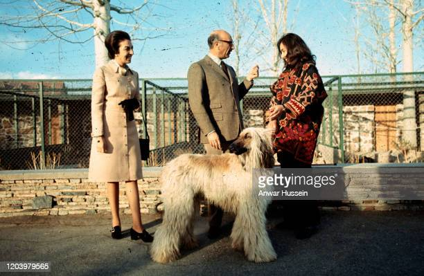 Mohammed Zahir Shah, the last King of Afghanistan, with his wife Hamira Begum and his afghan hound at his Palace in January 1972 in Kabul,...
