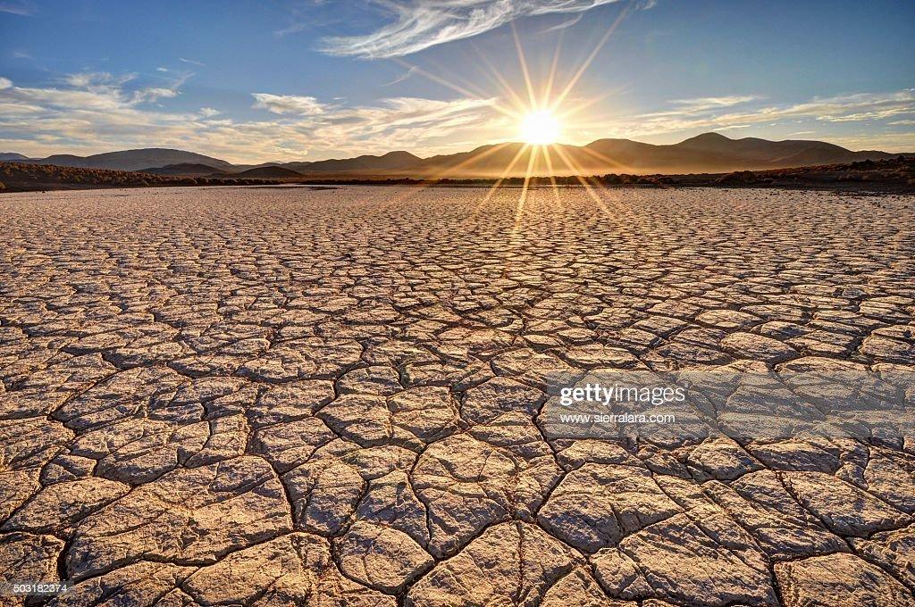 Mojave Desert Sunrise : Stock Photo