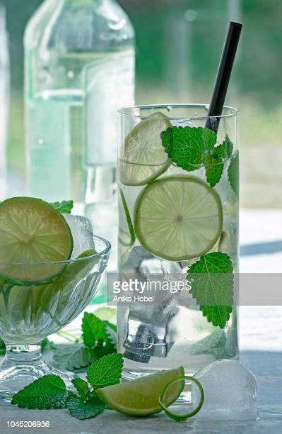 mojito cocktail - aniko hobel stock pictures, royalty-free photos & images