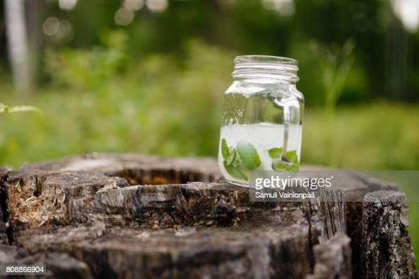 Mojito drink on a tree stump