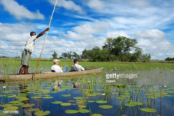 mokoro - botswana stock pictures, royalty-free photos & images