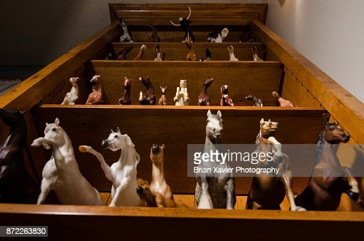 A molded horse collection on a wooden bookshelf