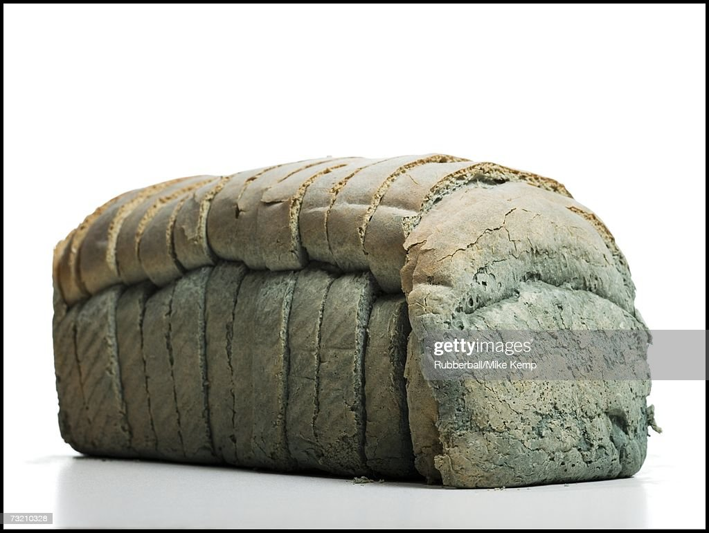 Moldy loaf of sliced bread : Stock Photo